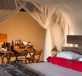 Hospitality Second to None - Robert Mark Safaris - Luxury African Safaris