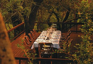 Feeding the Soul: A Bespoke Gourmet Safari - Robert Mark Safaris - Luxury African Safaris