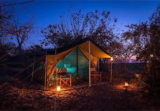 Wild and Diverse: In Touch with Nature - Robert Mark Safaris - Luxury African Safaris