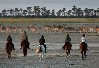 Horseback Safari Through The Kalahari  - Robert Mark Safaris - Luxury African Safaris