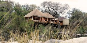 Londolozi - Robert Mark Safaris - Luxury African Safaris