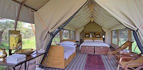 Serengeti Under Canvas - Robert Mark Safaris - Luxury African Safaris