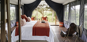 Ngorongoro Crater Camp - Robert Mark Safaris - Luxury African Safaris