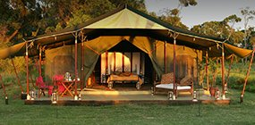 Elephant Pepper Camp - Robert Mark Safaris - Luxury African Safaris
