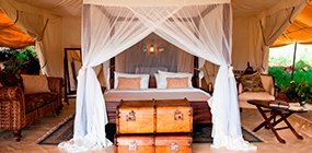 Cottar's 1920s Safari Camp - Robert Mark Safaris - Luxury African Safaris