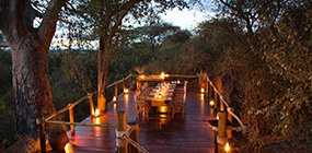 Oliver's Camp - Robert Mark Safaris - Luxury African Safaris