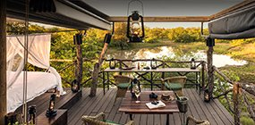 Motswari  - Robert Mark Safaris - Luxury African Safaris
