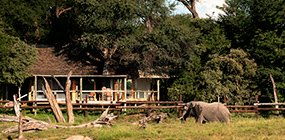 Savute Safari Lodge - Robert Mark Safaris - Luxury African Safaris
