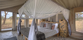 Ubuntu Camp - Robert Mark Safaris - Luxury African Safaris