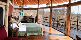 Tarangire Treetops - Robert Mark Safaris - Luxury African Safaris