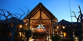 Kapama Game Reserve  - Robert Mark Safaris - Luxury African Safaris
