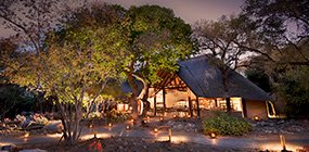 Ngala Safari Lodge - Robert Mark Safaris - Luxury African Safaris