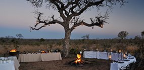 Idube Lodge - Robert Mark Safaris - Luxury African Safaris