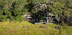 Abu Camp - Robert Mark Safaris - Luxury African Safaris