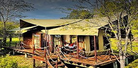 Serengeti Migration Camp - Robert Mark Safaris - Luxury African Safaris