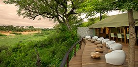 Ngala Tented Camp - Robert Mark Safaris - Luxury African Safaris