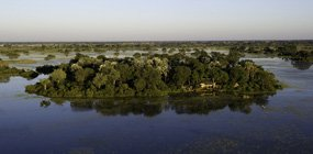 Jacana - Robert Mark Safaris - Luxury African Safaris