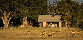 Linkwasha Camp - Robert Mark Safaris - Luxury African Safaris