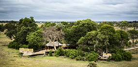Little Mombo Camp - Robert Mark Safaris - Luxury African Safaris