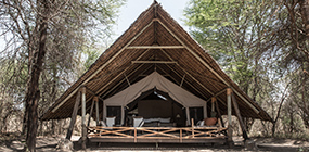 Jongomero - Robert Mark Safaris - Luxury African Safaris