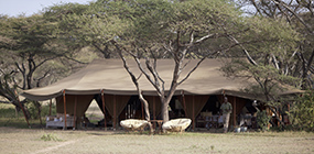 Serian's Serengeti South - Robert Mark Safaris - Luxury African Safaris
