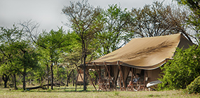 Serian's Serengeti North  - Robert Mark Safaris - Luxury African Safaris