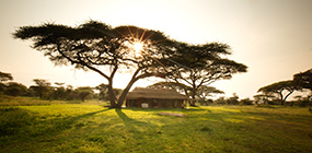 Serian's Serengeti Mobile Camp Kusini - Robert Mark Safaris - Luxury African Safaris