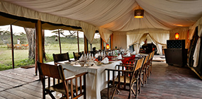 Lemala Ndutu Tented Camp - Robert Mark Safaris - Luxury African Safaris