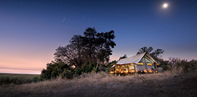 Linyanti Ebony - Robert Mark Safaris - Luxury African Safaris