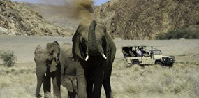 Doro Nawas Camp - Robert Mark Safaris - Luxury African Safaris
