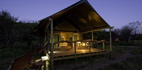 Ongava Tented Camp - Robert Mark Safaris - Luxury African Safaris