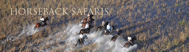Horseback Safaris - Robert Mark Safaris - Luxury African Safaris