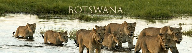BOTSWANA - Robert Mark Safaris - Luxury African Safaris