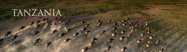 TANZANIA - Robert Mark Safaris - Luxury African Safaris