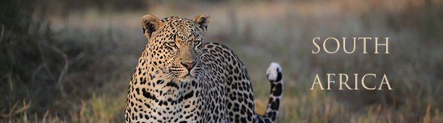 SOUTH AFRICA - Robert Mark Safaris - Luxury African Safaris